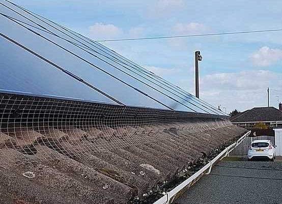 solar panel bird proofing lincolnshire