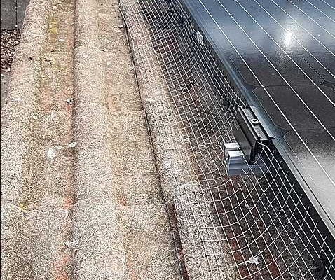 solar panel bird proofing lincolnshire